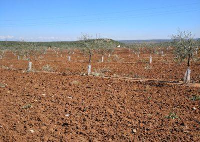 Venta de mallas agrícolas en Jaén